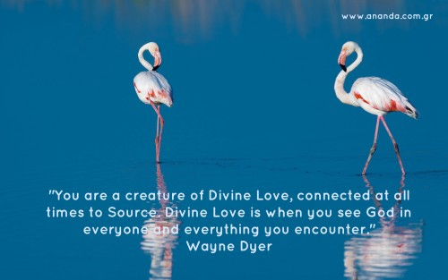 quote dyer